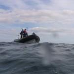 Oisre picking up Divers