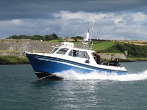 Domino returns to Kinsale with Divers