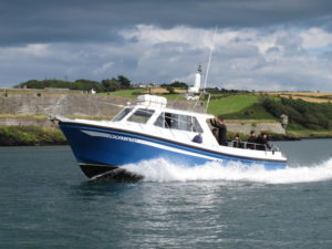 Domino cruises from Kinsale